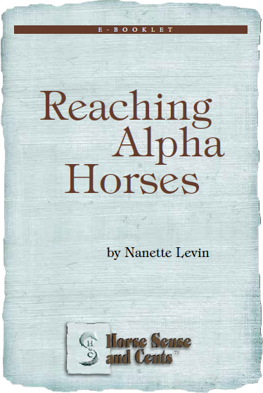 reaching-alpha-horses