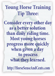 Young Horse Training Tip #3