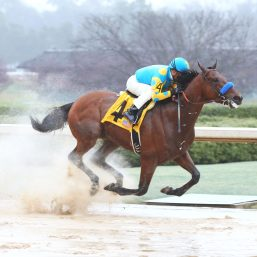 American Pharoah and Triple Crown Trivia at Horse Sense and Cents