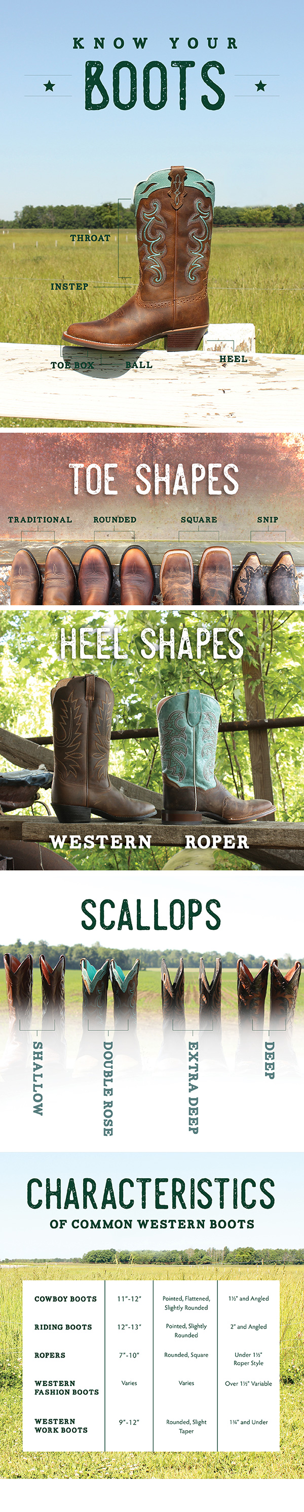 Western boot infographic to help you know the differences