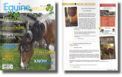 Equine Wellness magazine book review page, featuring review of Nanette Levin's book