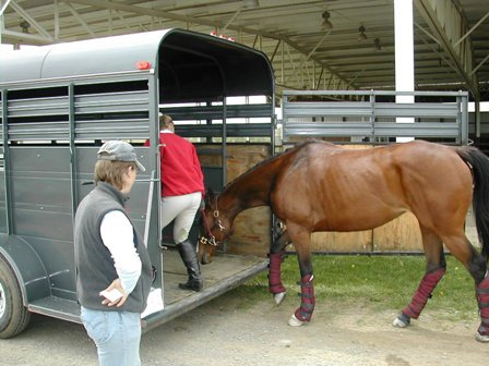 Horse trailer loading trouble solutions