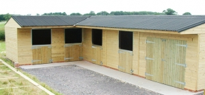 livery building solutions for your horse