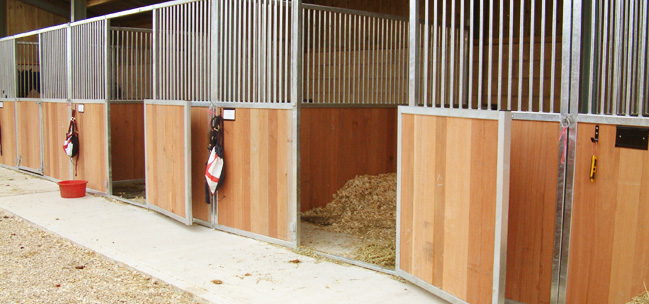 horse stablin with stalls