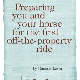 young horse training tips for the trail at //HorseSenseAndCents.com