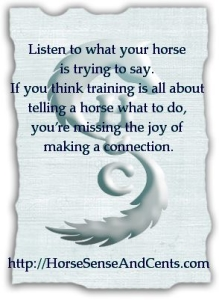 Listen and learn to build a relationship with your young horse beyond what you imagined