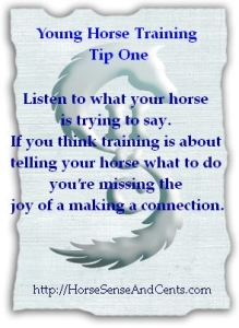 young horse training tip #1