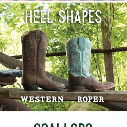 Know your horse boot differences